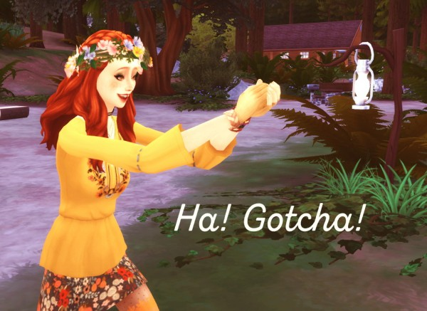 Mod The Sims: Catch those pesky bugs   No Failure to Collect Insects by ElenaInTheSims
