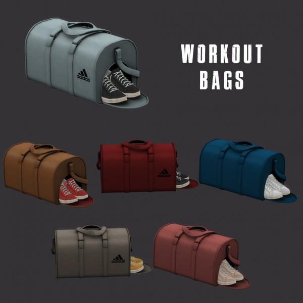 Leo 4 Sims: Workout bag