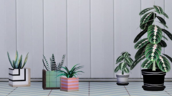 SLOX: Ansa Potted plants set