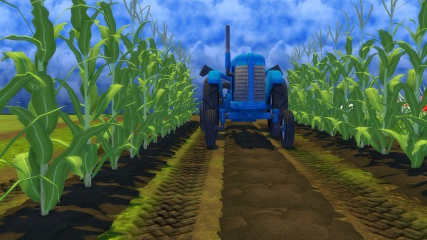 Mod The Sims: Farm and Orchard II: Tractor Tracks Terrain Paint by Snowhaze