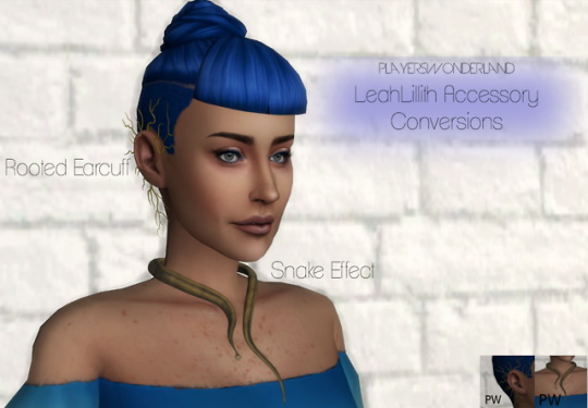 Players Wonderland: Leahlillith`s Accessory Converted