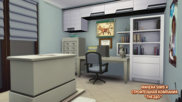 Sims 3 by Mulena: Vet clinic