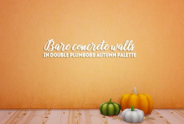 LinaCherie: HS bare concrete walls