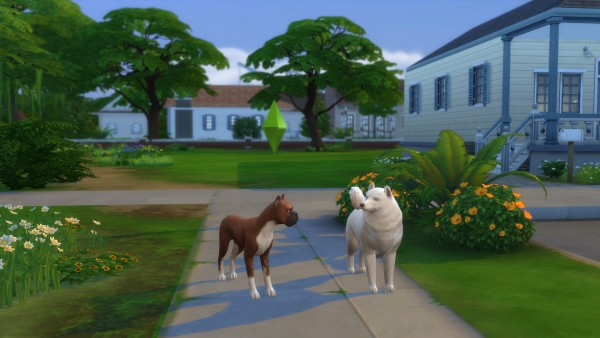 Mod The Sims: The Crittur Family by n8smom8496