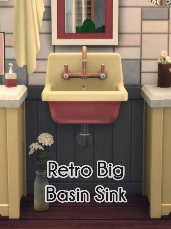 Picture Amoebae: Wooden Floor and Retrop Big Basin Sink