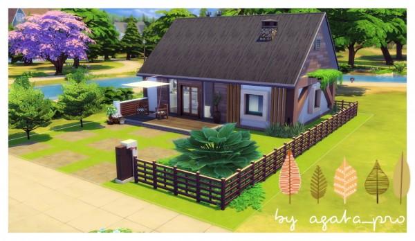 Agathea k: Starter Debutant and River Starter House