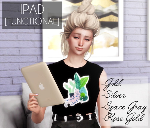 Descargas Sims: Functional iPad