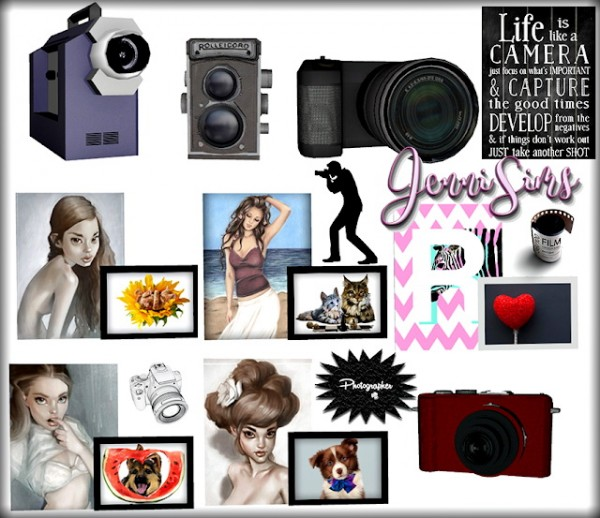 Jenni Sims: Decorative The Photographer Paintings and Cameras