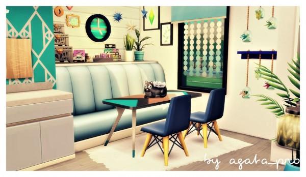 Agathea k: Colorful Disorder Kitchen