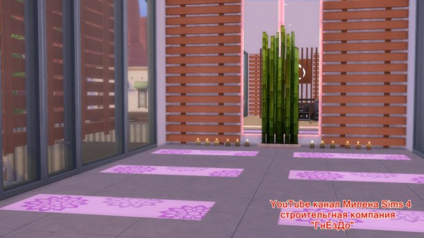 Sims 3 by Mulena: Gym in a container