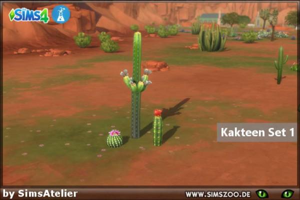 Blackys Sims 4 Zoo: Cacti Set 1 by SimsAtelier