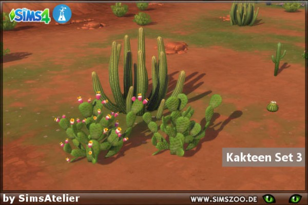 Blackys Sims 4 Zoo: Cacti Set 3 by SimsAtelier