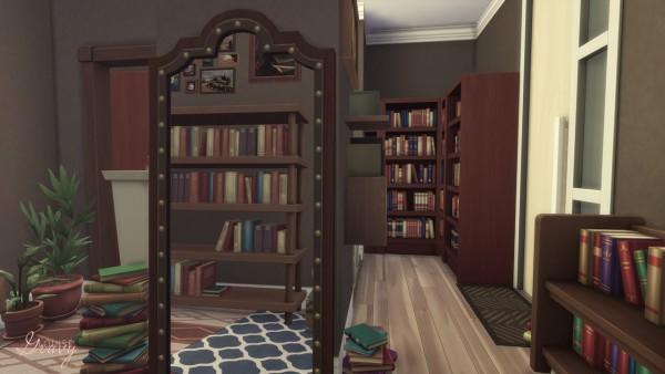 Gravy Sims: Shopping Center Collab   The Book Store