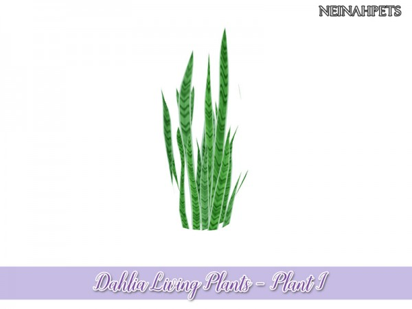 The Sims Resource: Dahlia Living Plant Collection by neinahpets