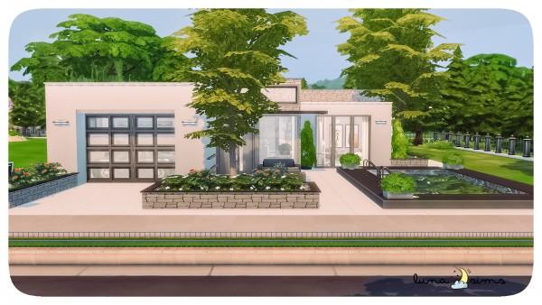 Luna Sims: Modern house
