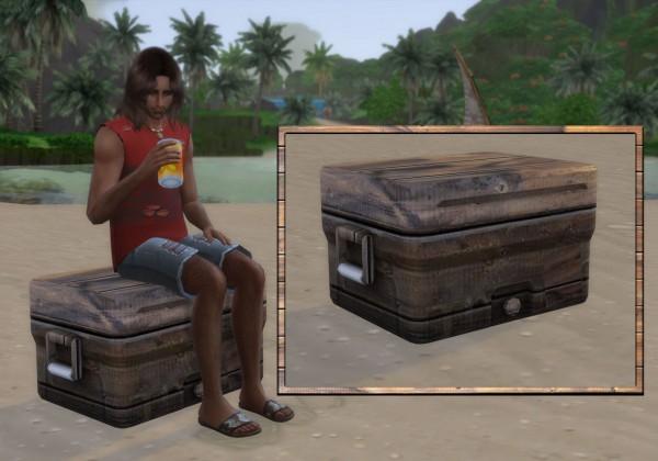 Alial Sim: Old Cooler