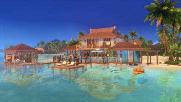 Catsaar: Blue Lagoon