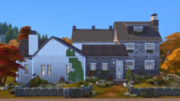 Catsaar: Ye Olde Farm House
