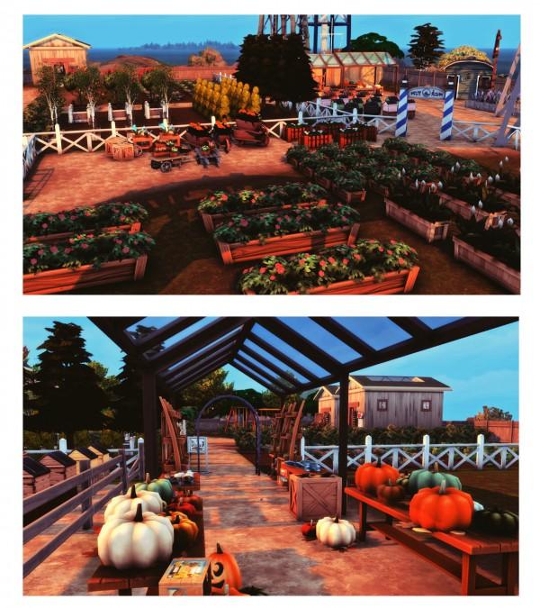 Wiz Creations: Farm Market
