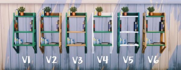 Picture Amoebae: Edgier Laddecase Bookcase Set