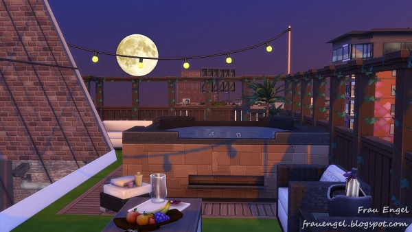 Frau Engel: Industrial Penthouse    No CC