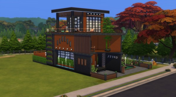 Sims Artists: Atypical house