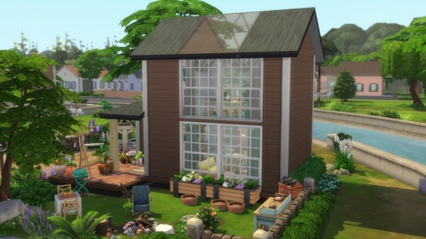 Sims Artists: Tiny House