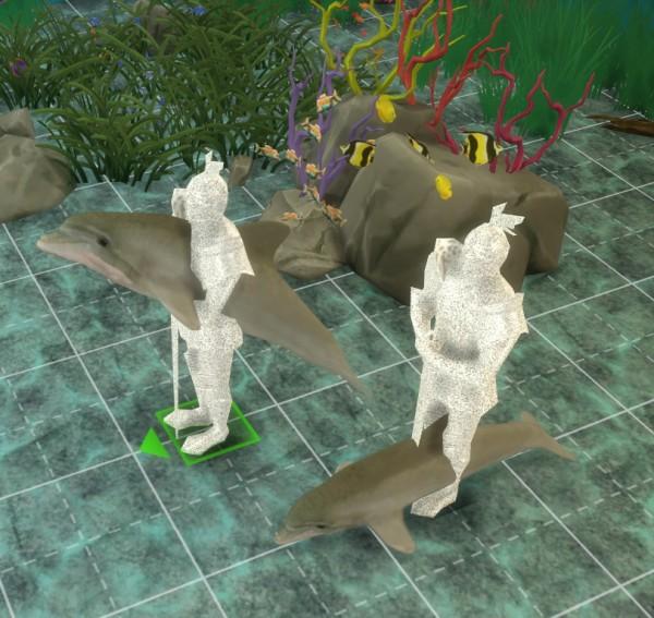 KM: Dolphin Poses