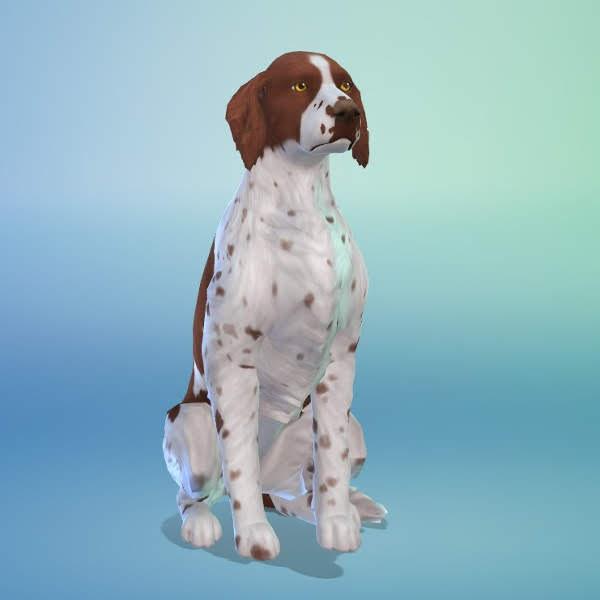 KyriaTs Sims 4 World: Hinchcliffe and Murgatroyd