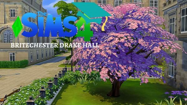 Milki2526: Britechester drake hall   no cc