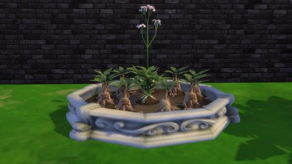 Mod The Sims: Circle Planter box by Serinion