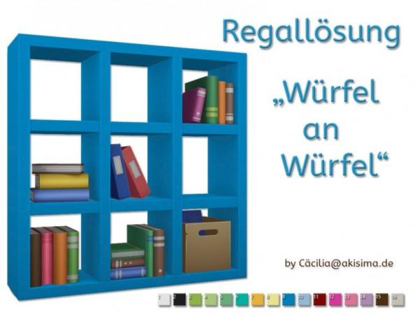 Akisima Sims Blog: Shelf solution To the University