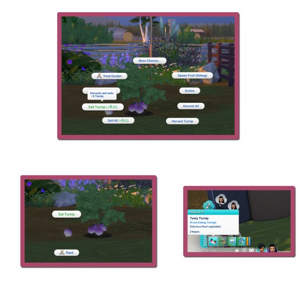 Mod The Sims: Harvestable Turnip by icemunmun
