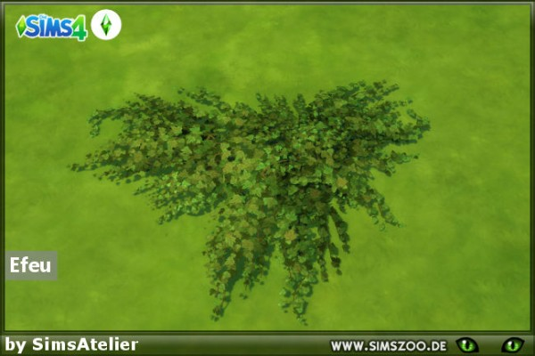Blackys Sims 4 Zoo: Ivy