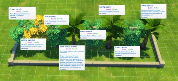 Luniversims: Grafted Perfect Trees by Olideg