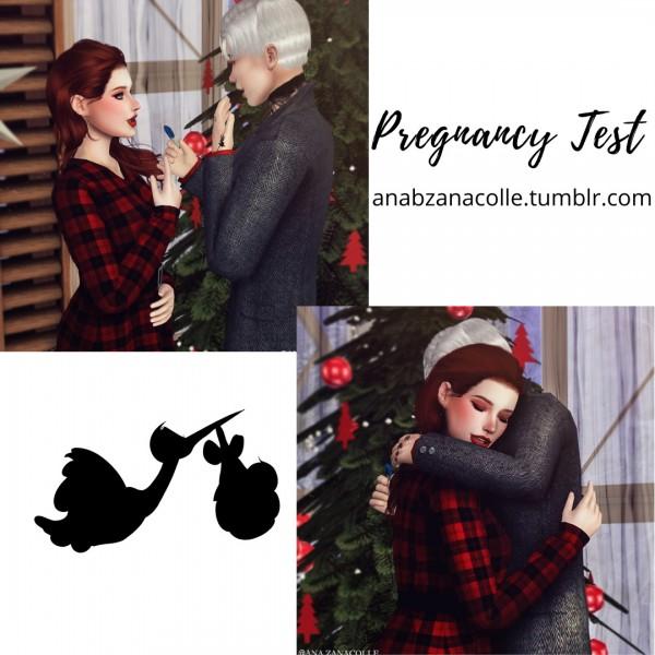 Ana Zanacolle: Pregnant Test posepack