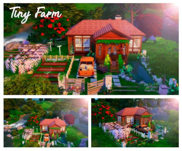 Liily Sims Desing: Tiny Farm (NoCC)