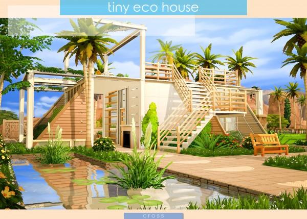 Cross Design: Tiny Eco House