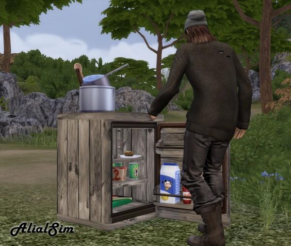 Alial Sim: Mini fridge