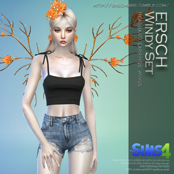 ErSch Sims: Windy Set