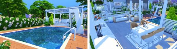 Aveline Sims: Shell Build Challenge