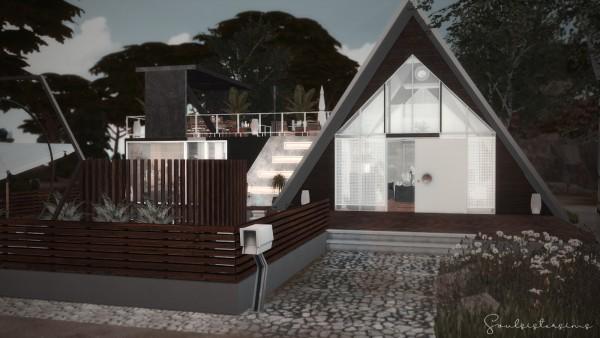 Ideassims4 art: 106 A Home