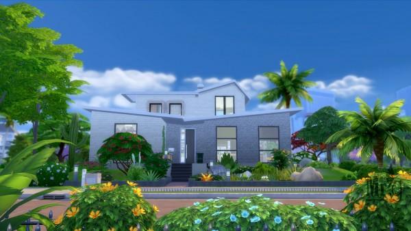 Misterglucose: Marcelo House