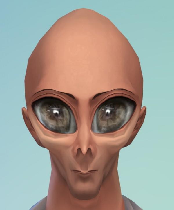 Mod The Sims: Realistic Alien Head by tklarenbeek