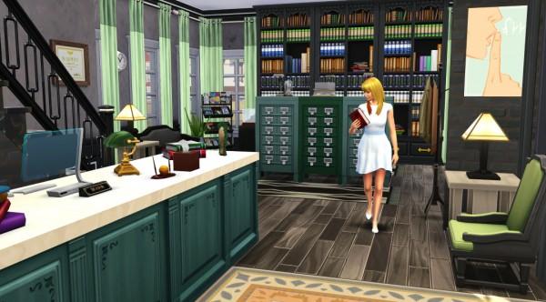 Jenba Sims: Cactus Cantina and Strangerville Library