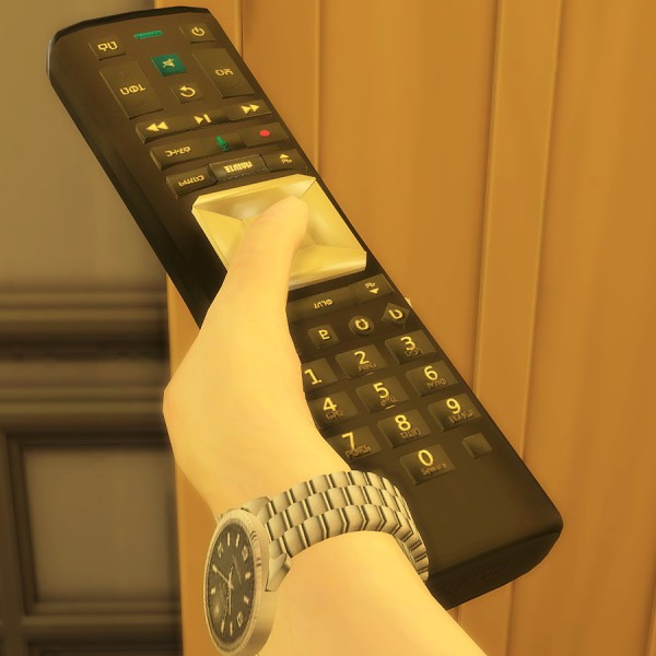 Mod The Sims: Default Replacement Remote Control by dynamus