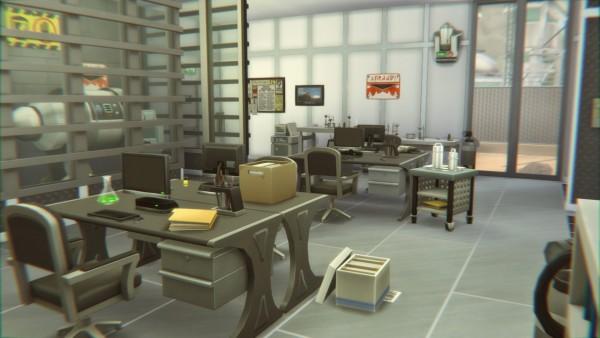 Catsaar: Space S Labs