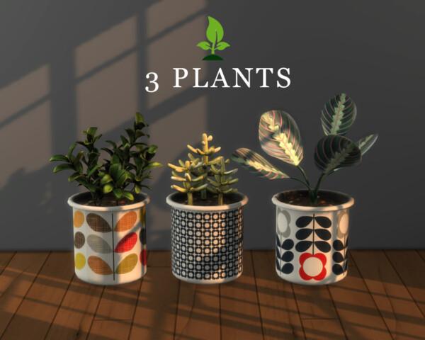 Leo 4 Sims: 3 Plants