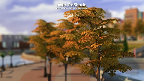 DH4S: How to install ReShade for the Sims 4? The basics