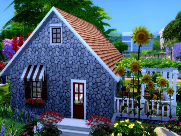 Gramma Cottage by GenkaiHaretsu from TSR